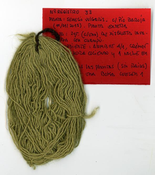 Lana xisqueta teñida con Senecio vulgaris.